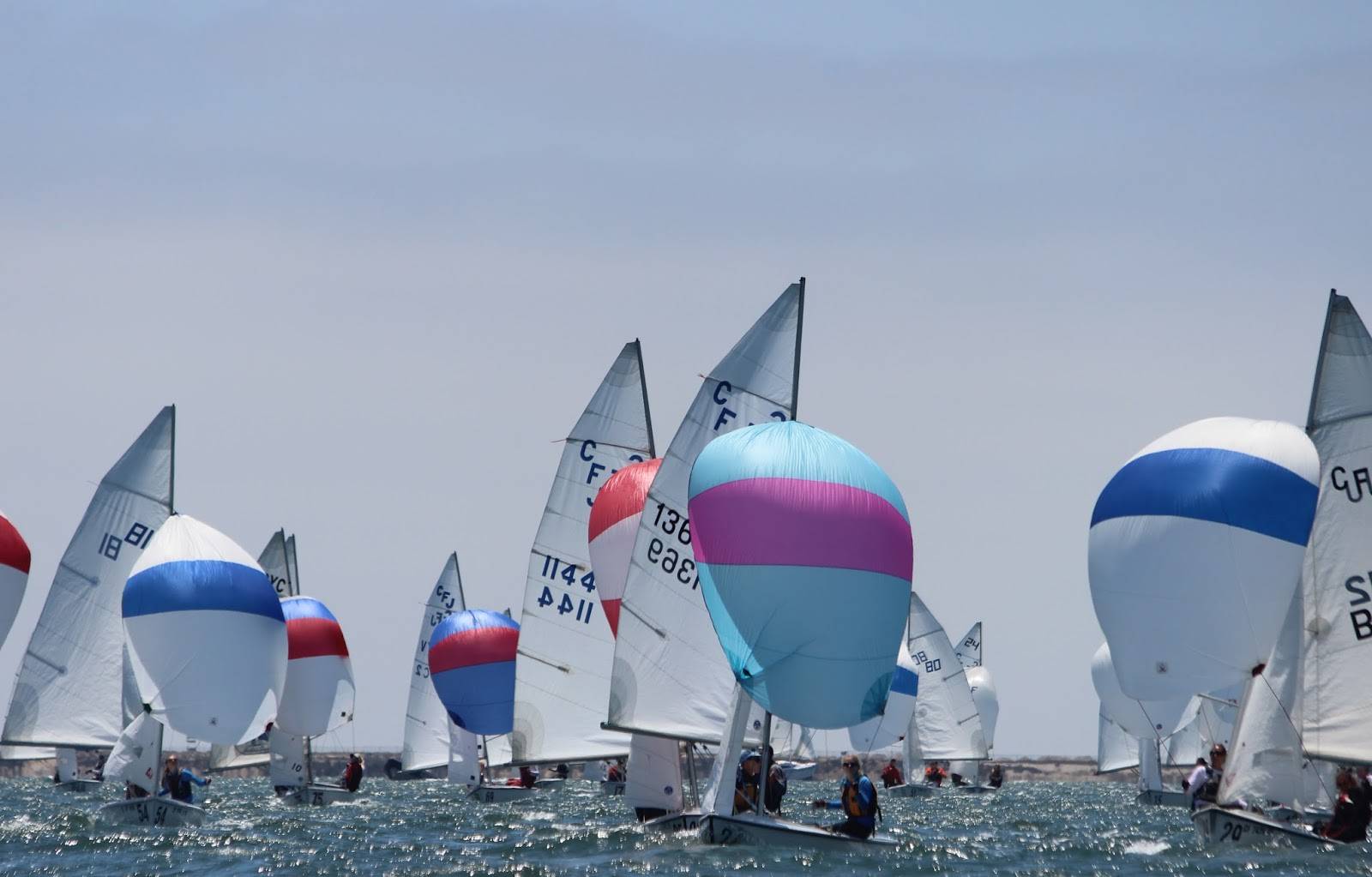 Spring Sailing Program